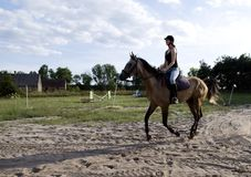 Woman riding horse. Young woman riding a grey horse, taking a riding lesson stock photography
