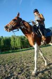 A woman riding a horse Stock Images