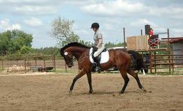 Woman Riding Horse stock photos