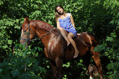 Woman riding horse bareback through forest. Beauty woman riding horse bareback through forest green background a summer countryside Stock Image