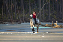 Woman riding horse on the beach. Woman riding horse bareback on the beach Royalty Free Stock Image