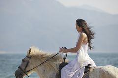 A woman riding horse on beach Royalty Free Stock Photo