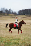 Woman riding horse in the field Royalty Free Stock Images