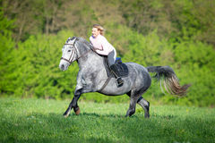 Woman riding a horse on the field Stock Photography