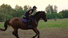 Woman riding horse by gallop