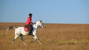 Woman riding a horse galloping across the field. Slow motion stock video footage