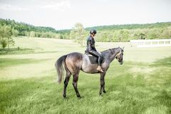 Woman riding horse on the green meadow stock photo
