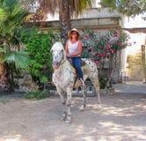 Woman riding horse. Happy mature woman riding horse Stock Photos