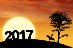 Woman riding a horse on the hill. Silhouette woman riding a horse on the hill looking at number of 2017 Royalty Free Stock Photos