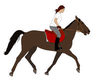 Woman riding horse. Illustration - vector Stock Photos