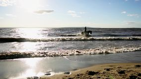 Woman riding on horse at river beach in water sunset light stock video