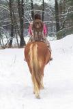 Woman Riding a Horse the Snow Royalty Free Stock Photos