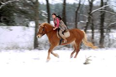 Woman Riding a Horse the Snow Stock Photo