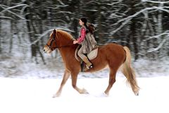 Woman Riding a Horse the Snow Stock Photography