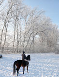 Woman riding horse in snow Stock Photography