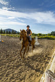 Woman Riding a Horse in Sunny Outdoor Ring Royalty Free Stock Photos