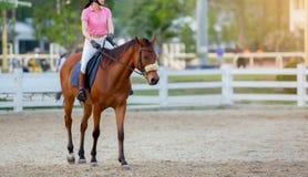 Woman riding on a horse stock photos