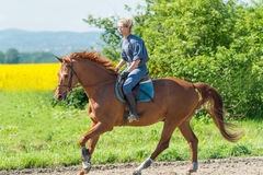 Woman riding a horse Stock Photography
