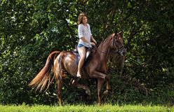 Woman riding horseback through forest Stock Photos