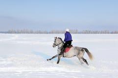 Woman riding horseback snow fields Stock Photography
