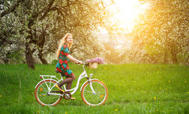 Woman riding vintage white bicycle with flowers basket stock images
