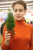 Woman with room plant in store Royalty Free Stock Image