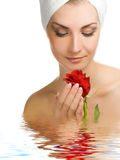 Woman with a rose Stock Images