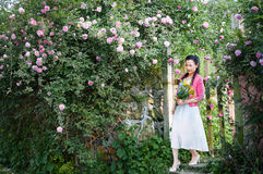 Woman in rose garden Stock Photos