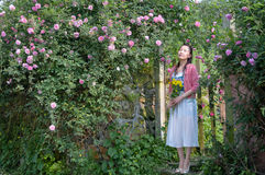 Woman in rose garden Royalty Free Stock Photos