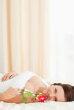 Woman with a rose lying on a bed Royalty Free Stock Photography