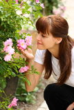 Woman and roses. A woman smelling blossom of a roses bush outside in a park Stock Photo