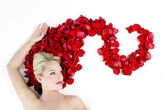 Woman with roses Stock Photography