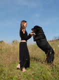 Woman and rottweiler Stock Images