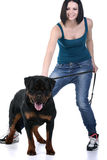 Woman with a Rottweiler dog Stock Photo