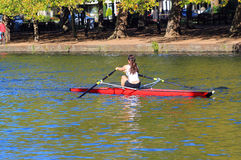 Woman rowing. Stock Images