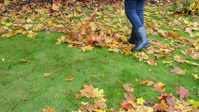 Woman rubber boots jeans rake colorful autumn maple tree leaf stock video footage