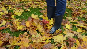 Woman rubber boots play colorful autumn maple tree leaves meadow. Woman in  rubber boots legs play with colorful autumn maple tree leaves on meadow stock video