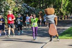 Woman runner high-fives OSU mascot during 5K charity run Royalty Free Stock Photo