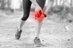 Woman runner hold her injured leg after running in forest trail. Stock Images