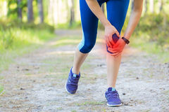 Woman runner hold her injured leg after running in forest trail. Stock Photos