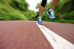 Woman runner legs running at forest trail Royalty Free Stock Photos
