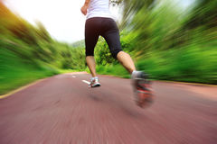 Woman runner legs running at forest trail Stock Photo