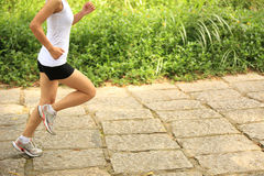 Woman runner running at forest trail Royalty Free Stock Images