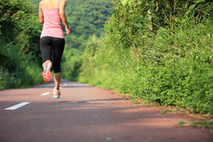 Woman runner running at forest trail Stock Photography