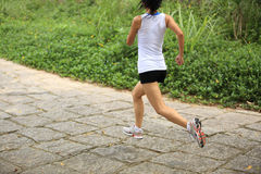 Woman runner running at forest trail Stock Image