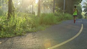 Woman running on forest trail. Woman runner running on forest trail stock footage
