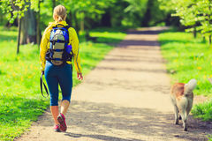 Woman runner walking with dog in summer park Stock Images