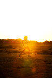 Woman Running. A woman running down a path at the beach Stock Photography
