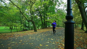 Woman running in autumn fall forest. Female runner training outdoor. Healthy lifestyle. stock video