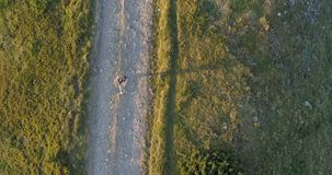Woman Running on a Countryside Road at Sunset. Woman Running on a Countryside Road at Sunset, aerial shot stock video footage